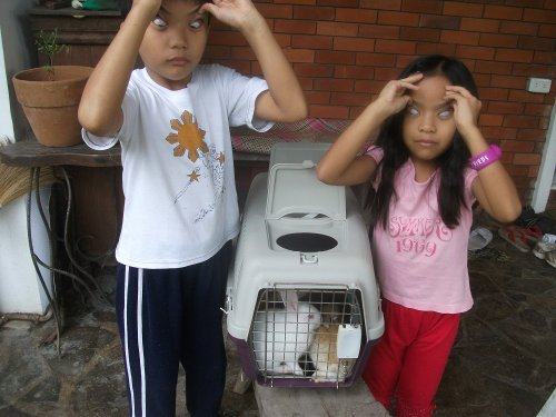 Children and their rabbits striking a pose