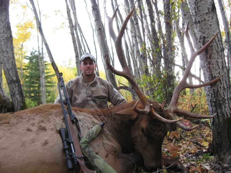 Elk byMarchunting found on http://www.ihuntcanada.com/elk.htm