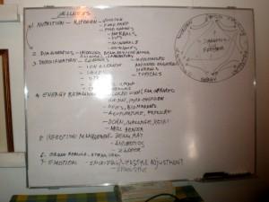 wellness-chart-by-romy-macapagal